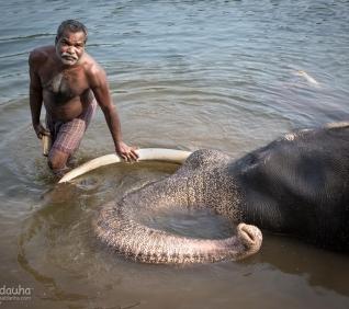 Abhayaranyam, Kodanac, Cochin, India