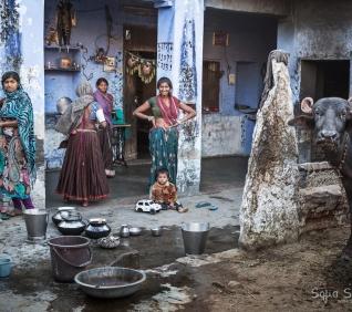 The blue family house, Narlai, India.