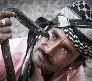Snake charmer, pushkar, India.