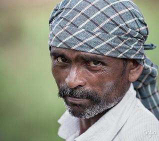 Man, Kumarakom, India.