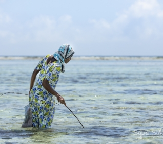 Zanzibar-102