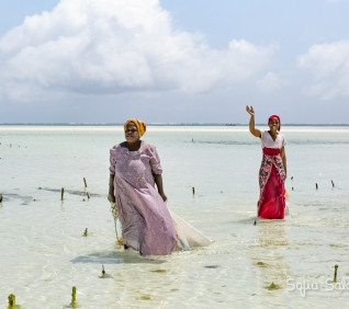 Zanzibar-118