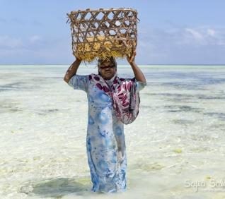 Zanzibar-123