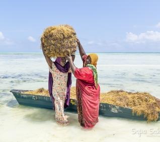 Zanzibar-129
