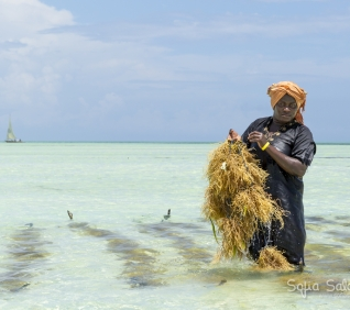 Zanzibar-136