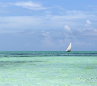 Zanzibar-140