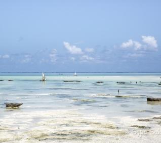 Zanzibar-150