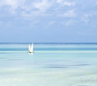 Zanzibar-153