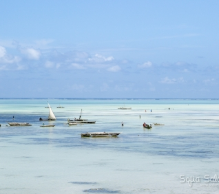 Zanzibar-156