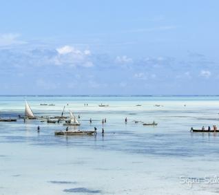Zanzibar-157