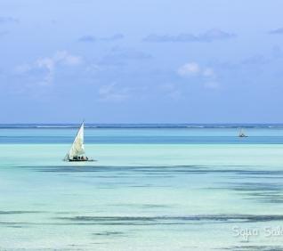 Zanzibar-158