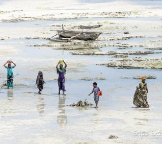 Zanzibar-175