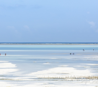 Zanzibar-178