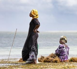 Zanzibar-31