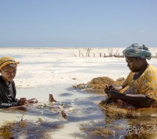 Zanzibar-44