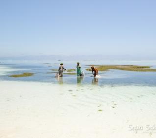 Zanzibar-48