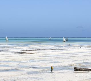 Zanzibar-52