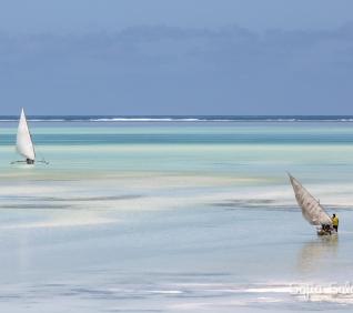 Zanzibar-55