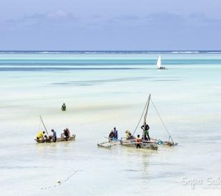 Zanzibar-58