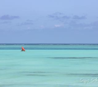Zanzibar-61