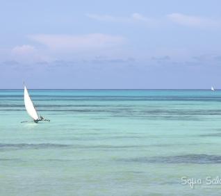 Zanzibar-62