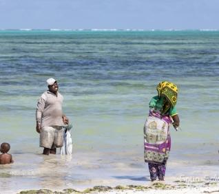 Zanzibar-87