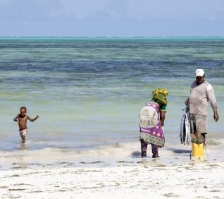Zanzibar-88