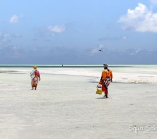 Zanzibar-89