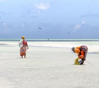 Zanzibar-90