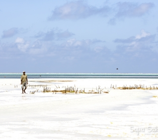 Zanzibar-93