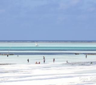 Zanzibar-94
