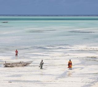 Zanzibar-97