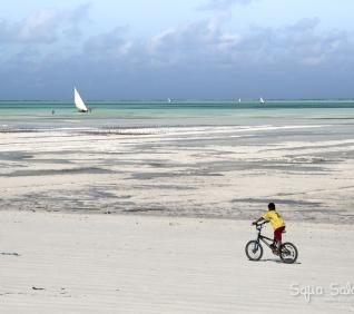 Zanzibar-99